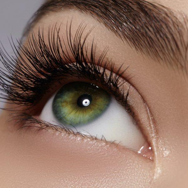 Eyebrow Eyelash Treatments Michelle Lawley Wolverhampton